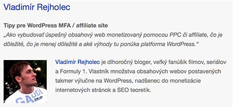 Vladimir Rejholec - Wordcamp 2013 spiker