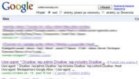 google index robots.txt